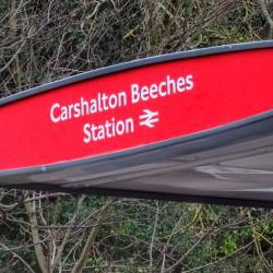 Picture Of Transport for London leaves Carshalton passengers perplexed with bus stop mix-up